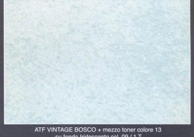 bosco_iridescente_09+mezzo_toner13