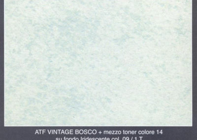 bosco_iridescente_09+mezzo_toner14