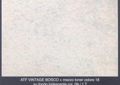 bosco_iridescente_09+mezzo_toner18