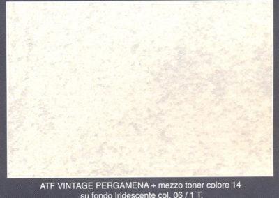 pergamena_iridescente_06+mezzo_toner14